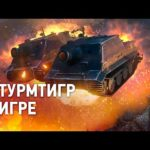 Штурмтигр в твоем ангаре: СКОРО! [World of Tanks]